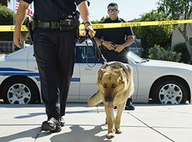 policediscountpic