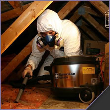 Attic And Crawl Space Cleanup