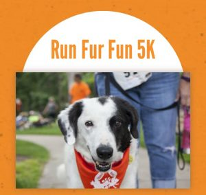 run-fur-fun-2017