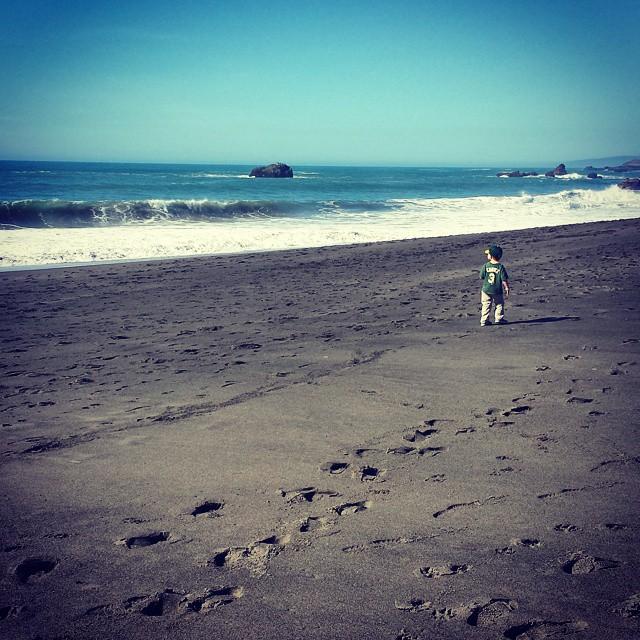 Sonoma County Coast