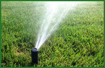 watering-161205-5845f3e98e541143323