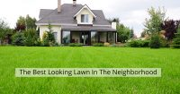 great-lawn-featured-021617
