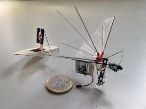 Micro Drone 609