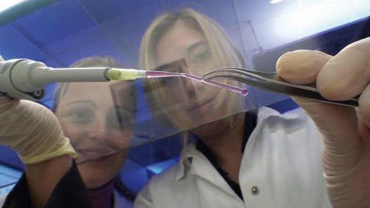 Printed artificial blood vessels 22