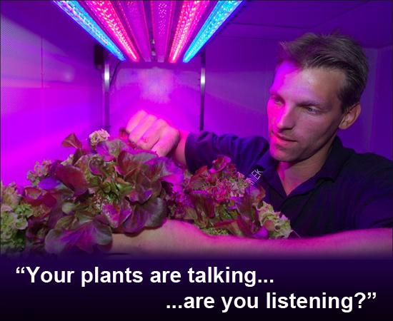 Secret-Language-of-Plants