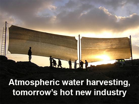 Water-Water-Harvesting-11