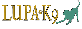 Logo-with-text-new-sans6