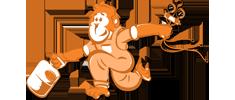 orangutan_service