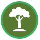 lawn tree in green circle