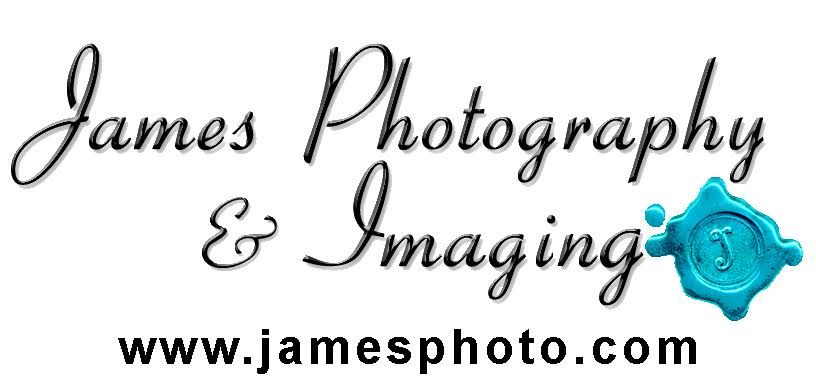 preferred vendor for photography