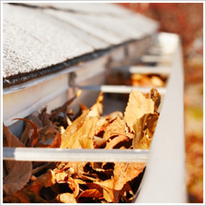 Gutter Cleaning Service Arlington VA - Professional ...