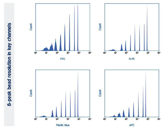 france research paper format pdf mla