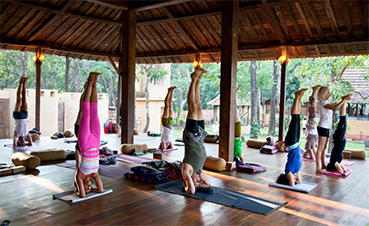 Bring your class to our Ayurveda retreat in India!