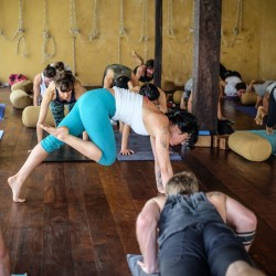 Take a yoga vacation at our holistic retreat. Call us to learn more.