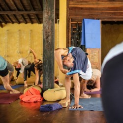 Take the time to recharge at our Goa yoga retreat.