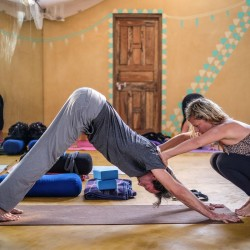 Receive training from world-class instructors at our yoga retreat.