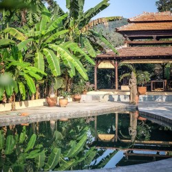 Immerse yourself in peace at our Goa yoga retreat.