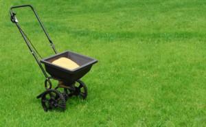 lawn fertilizer Whitinsville