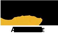 Century_21_logo33