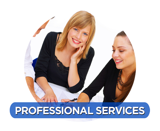professionalservices23