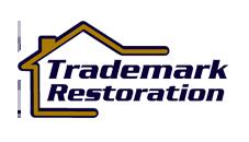 tm logo_3