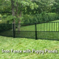 an iron fence installation with puppy panels