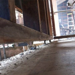 House leveling is important to fix those unsightly cracks for good.